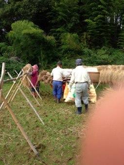 稲刈り終了〜同時に魔の藁積みも終了。。。良かった。本当に良かった。