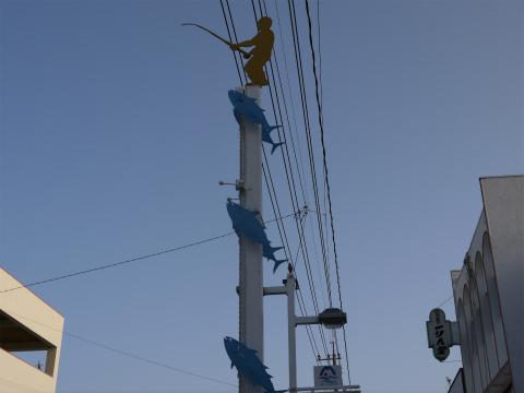 カツオの刺身が食べられるお店! 鹿児島県枕崎 魚処なにわ